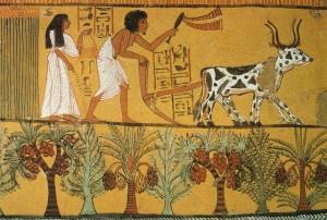 Vita quotidiana nell'Antico Egitto