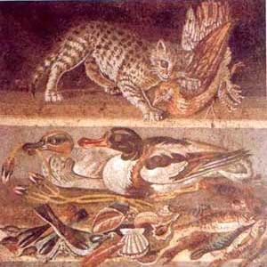 Le carni preferite dagli antichi romani for Cucina antica roma