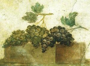 Grappoli d'uva in un affresco romano. Nell'Antica Roma il vino veniva consumato allungato con acqua