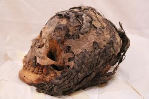"""La testa della donna trovata ad Amarna (Egitto). Sono ben visibili le """"extension"""""""