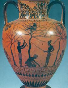 Vaso greco con dipinto un albero di olivo. Le olive erano molto adoperate in cucina, sia dai Greci che dai Romani,