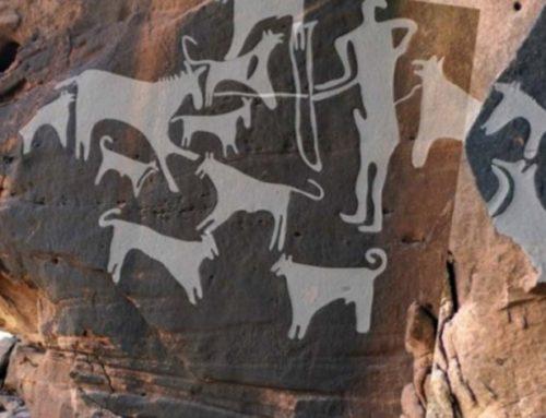 Il Cane e l'Uomo Amici da 8000 Anni?