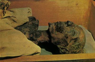 momia en polvo