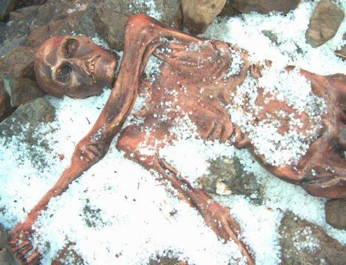 Ötzi war krankes Herz